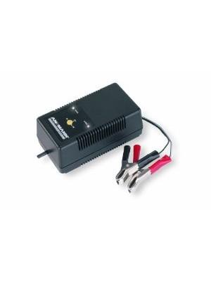 Ansmann ALCT 6-24/2 PB charger 6-24V max 2Ah