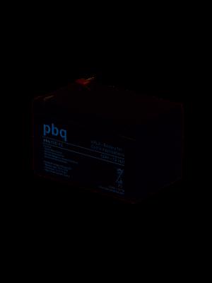 PBQ loodaccu cyclisch 12V 12Ah 151x96x96mm